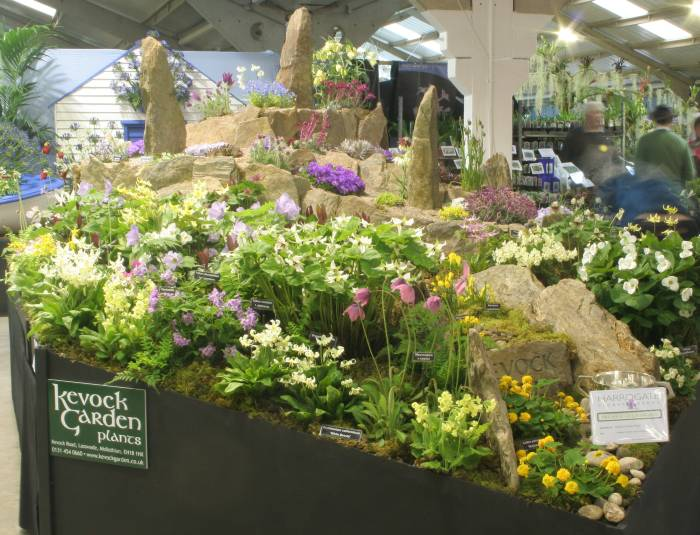 Harrogate spring flower show 2013 we had an excellent position at the entrance to one of the two halls and this was the view that greeted people as they left the cafeteria one of the few mightylinksfo