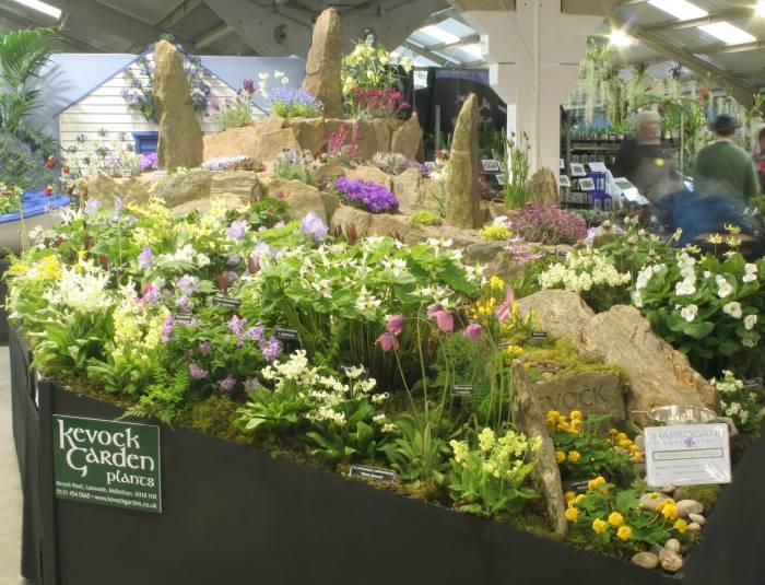 Harrogate spring flower show 2013 mightylinksfo